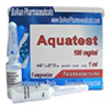 Aquatest (testosterone suspension)